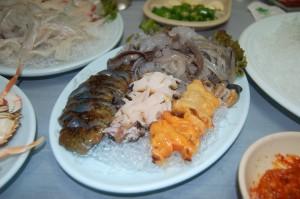Korea trip 5g