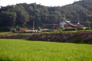 Korea trip 6a